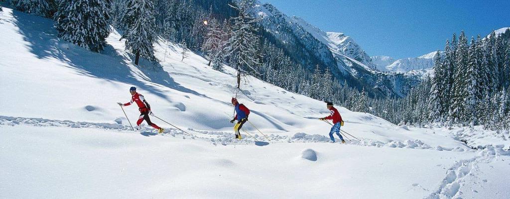 headerbild biathlon