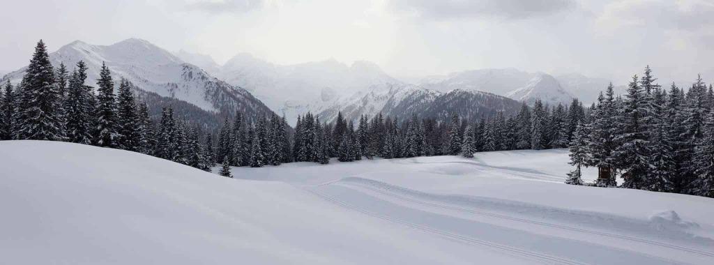 slide natur