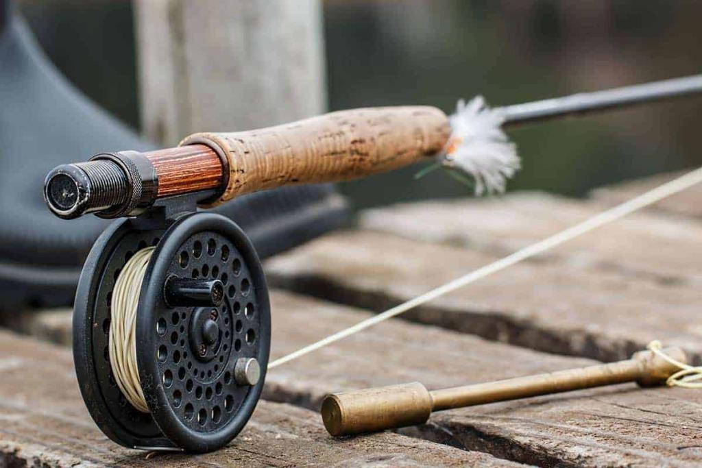 teaser fischen